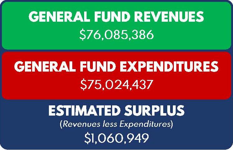 BudgetSnapshotFY201920FINA_Page_1.png gf breakdown