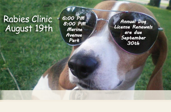 August 19, 2015 Rabies Clinic at Marine Avenue Park