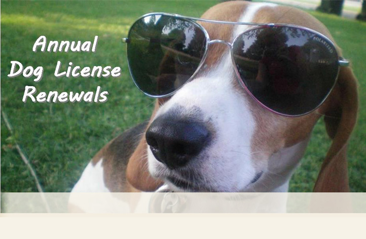Dog License Renewals are due by 09-30-15