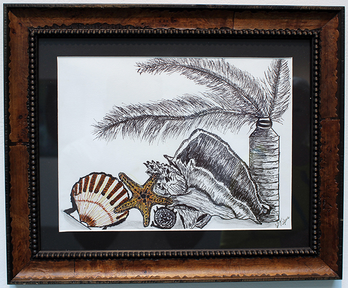 Shells and Feathers, Drawing, Pen and Ink by Judith St John