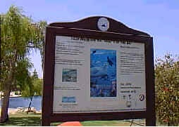Storm water pollution sign