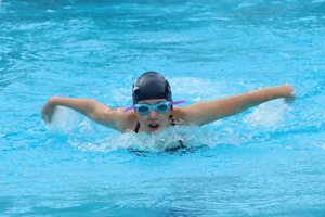 MB Dolphin Swim Team member swimming Butterfly in the November 12, 2017 swim meet