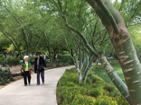 Two ladies walking down a path on an Older Adults Trip to Sunnylands