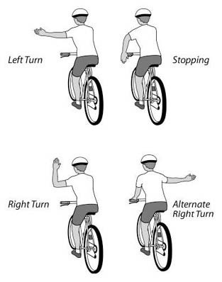Use hand signals when you stop or make a turn.