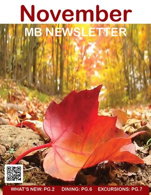 MB Senior Newsletter Cover November 2019